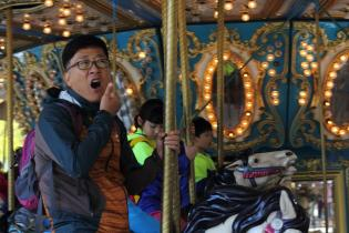 Funny Carousels
