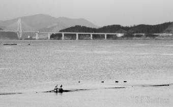 Afternoon at Geoje