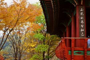 Pagoda overlooking Jeonju Hanoak Village
